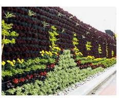 Jardín vertical en el Parque de la Muralla de Lima