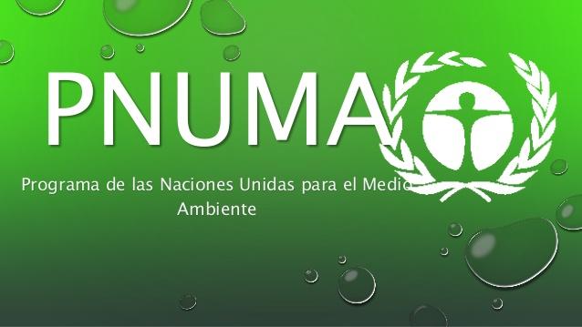 PNUMA. Organismo de NNUU rector en materia ambiental